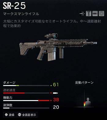 ブラックビアードSR-25
