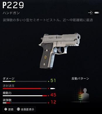 ヒバナP229