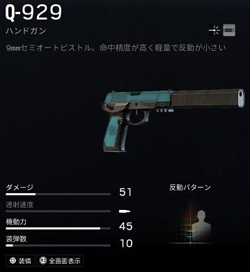 リージョンQ-929