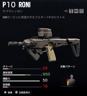 r6s P10 RONI